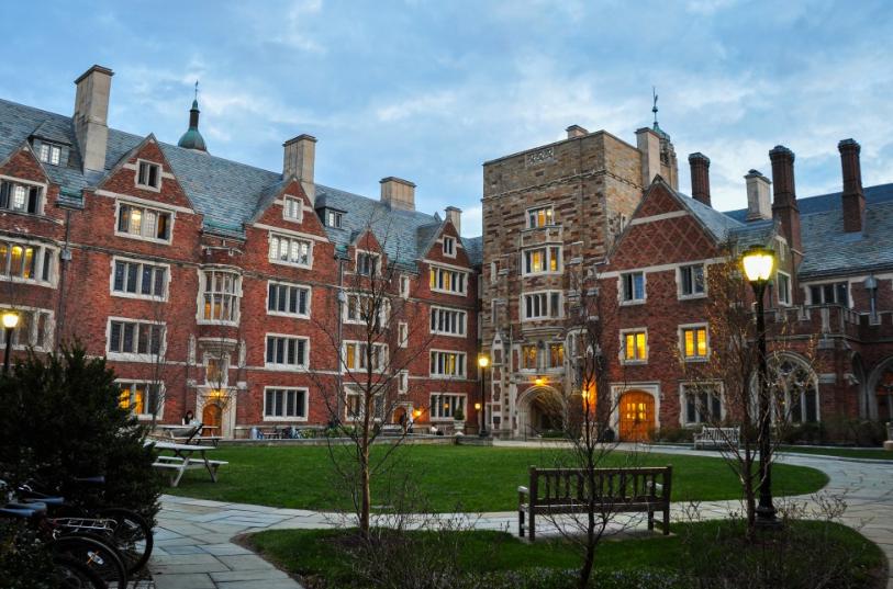 universidad-curso-feliz-lavibrante