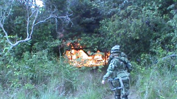 """""""Fuerzas Militares y Policía Nacional destruyen dos laboratorios para procesamiento de pasta base de coca en Vichada"""""""