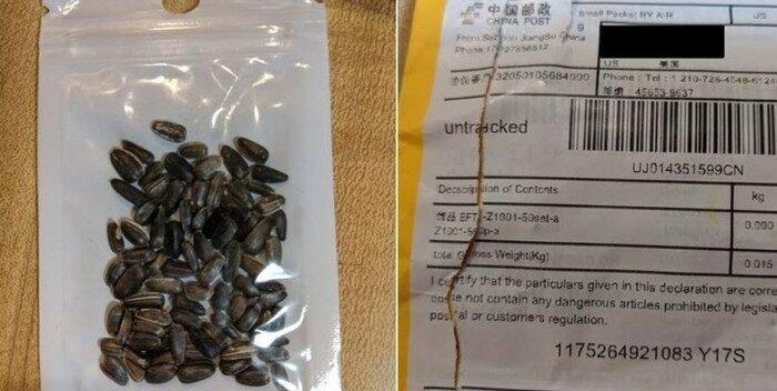 #Florida alerta sobre misteriosos paquetes de semillas provenientes de China