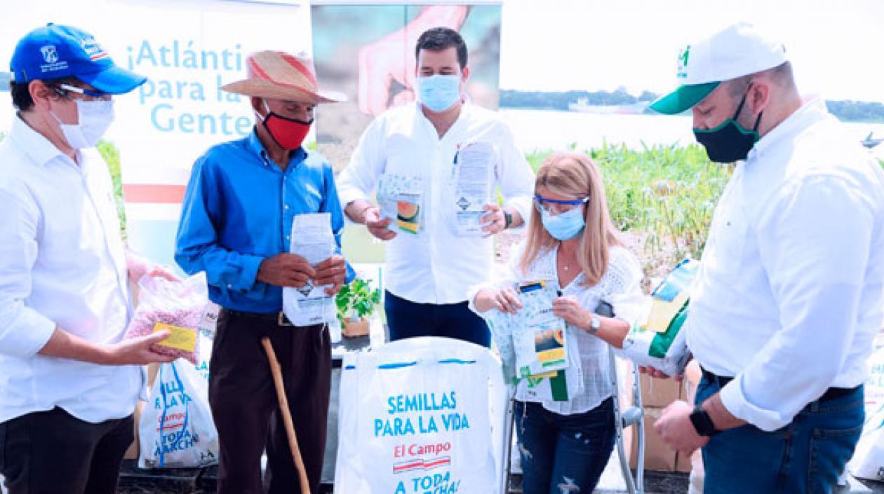 Entregan kits de siembra con semillas certificadas en 18 municipios del Atlántico