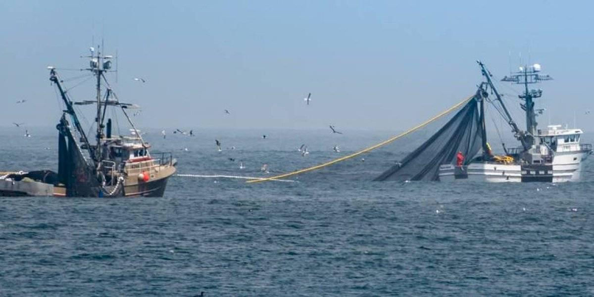Estados Unidos respalda a Ecuador para vigilar navío pesquero chino