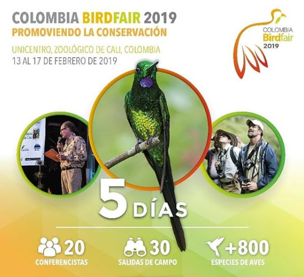 Cali abre sus puertas para la V edición de Colombia BirdFair