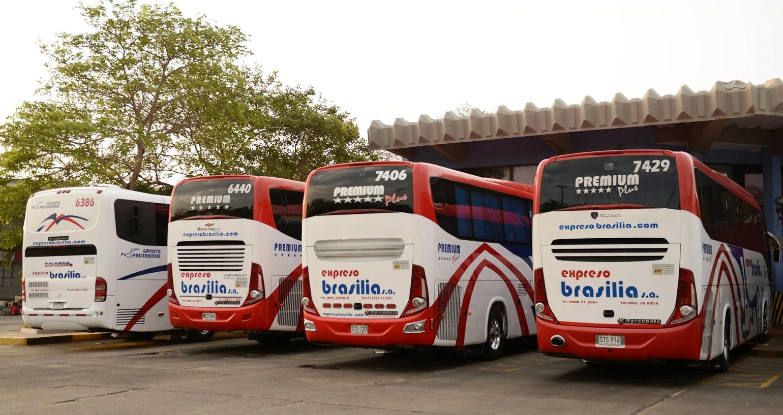 Expreso Brasilia y Unitransco prevén incremento del 10% de pasajeros en Semana Santa