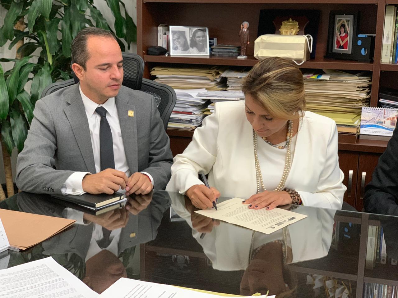 Senadora Paola Holguín radicó proyecto de ley que promueve el respeto y la defensa de la dignidad y memoria de las víctimas
