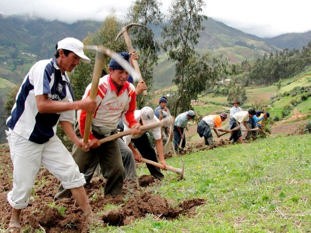 Colombia celebra el Día Nacional del Campesino