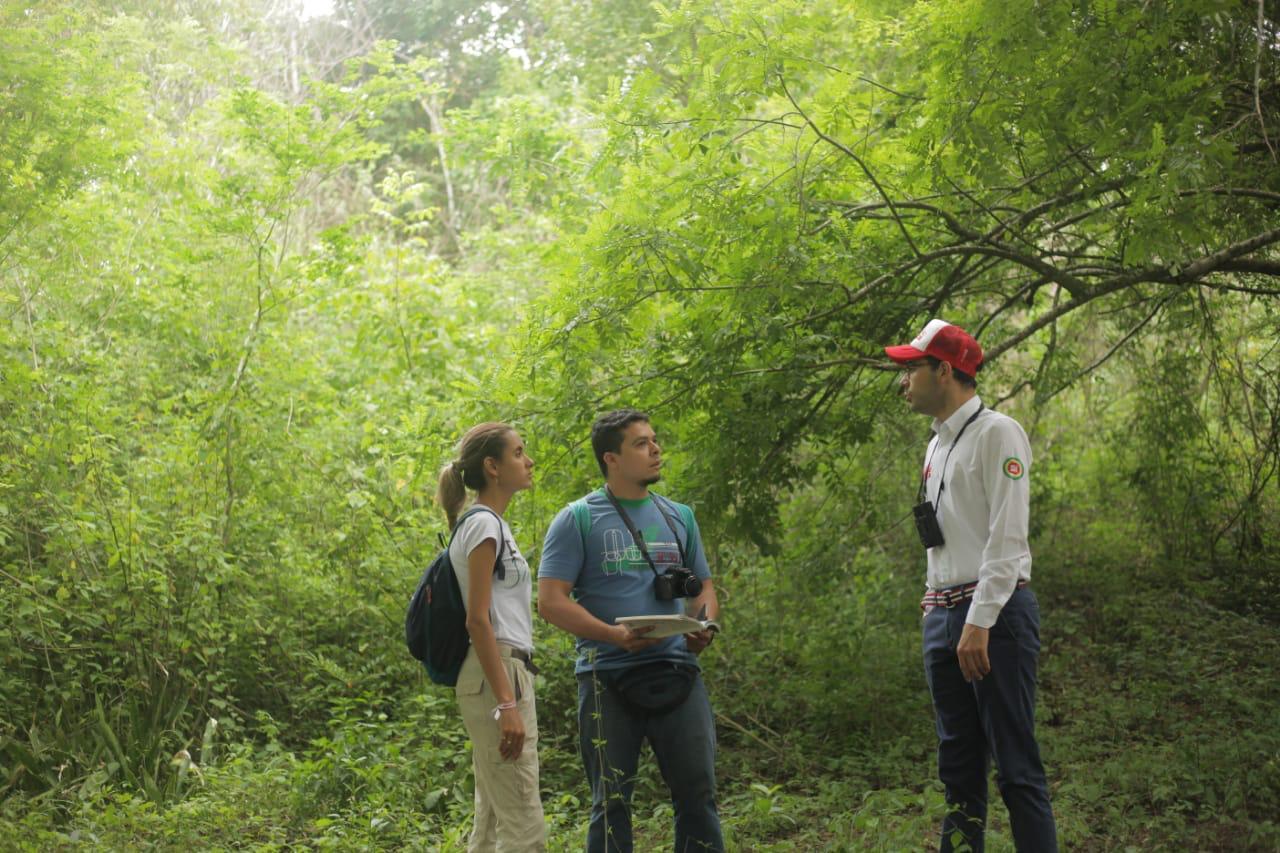 El cerro de la popa merece ser un bosque de paz: Sergio Londoño