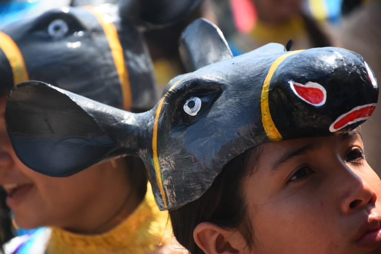 Banda de Baranoa abrió la Batalla de Flores al paso del Burro Corcoveón