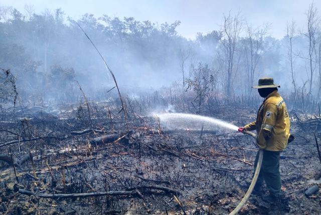 Incendio en Parque Isla de Salamanca sigue activo