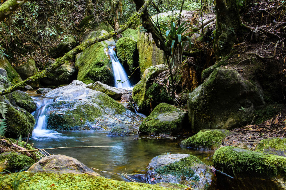 Secretaria de Ambiente realizará conversatorio sobre el agua y el cambio climático en Bogotá