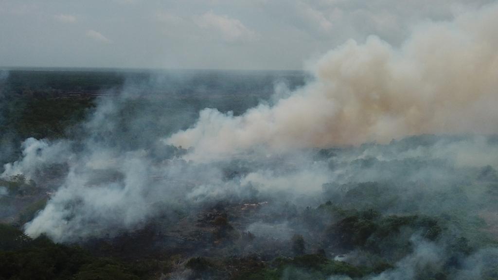 Gobierno Nacional será citado a control político por quemas en Parque Salamanca
