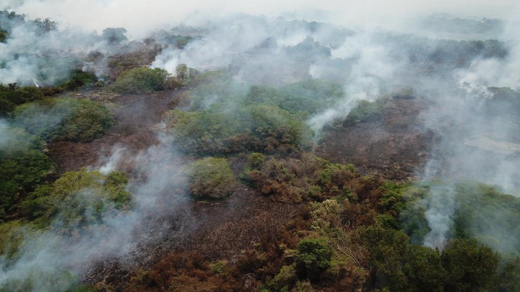 @alcaldiabquilla presentará estrategia integral cero incendios en Parque Isla Salamanca