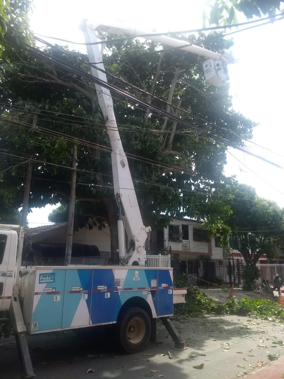 Fortalecen servicio de energía en  Soledad con nuevo circuito