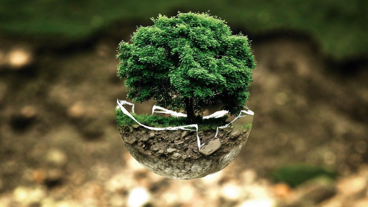 Pakistán es el país elegido para ser el anfitrión de este año del Día Mundial del Medio Ambiente