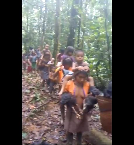 Desplazamiento forzado de indígenas por amenazas del ELN