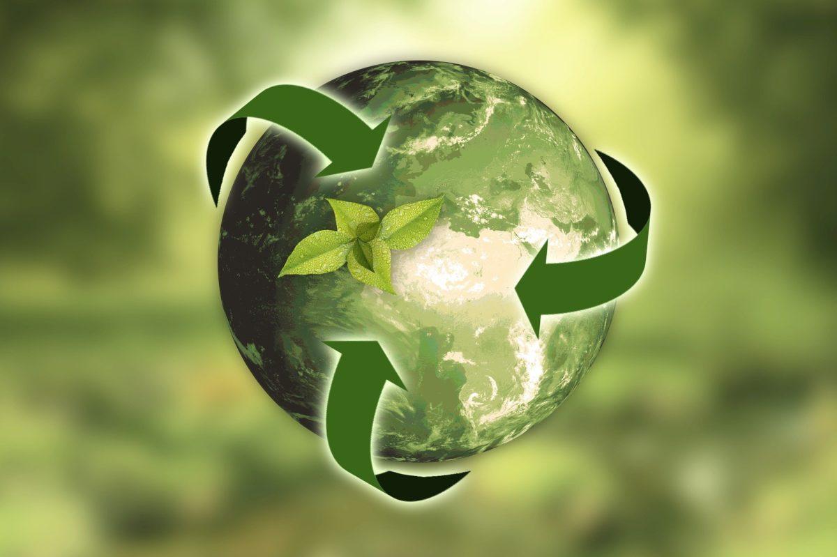 300 toneladas de material han sido recuperadas gracias al programa de reciclaje de Cruz Verde