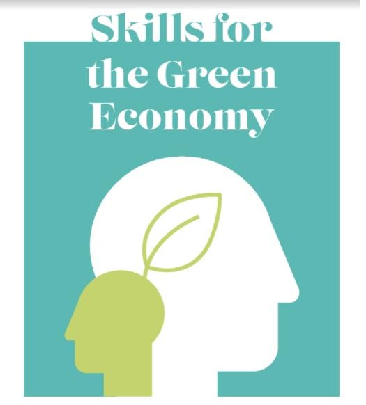 Habilidades para la economía verde: por qué es clave invertir en las personas