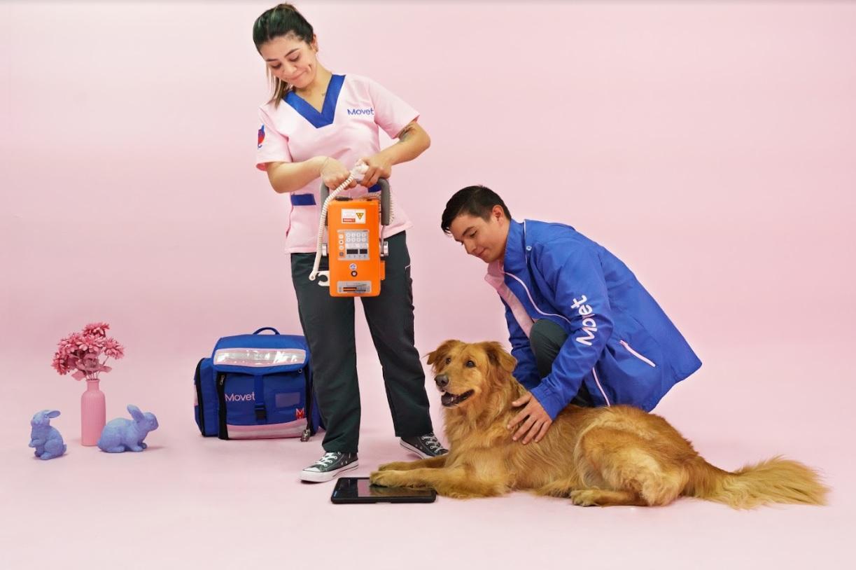 La pandemia y las movilizaciones refuerzan la necesidad de la telemedicina para las mascotas