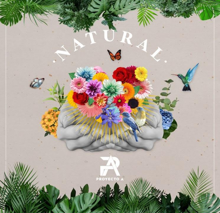 """Proyecto A regresa con """"natural"""", su nuevo lanzamiento musical"""