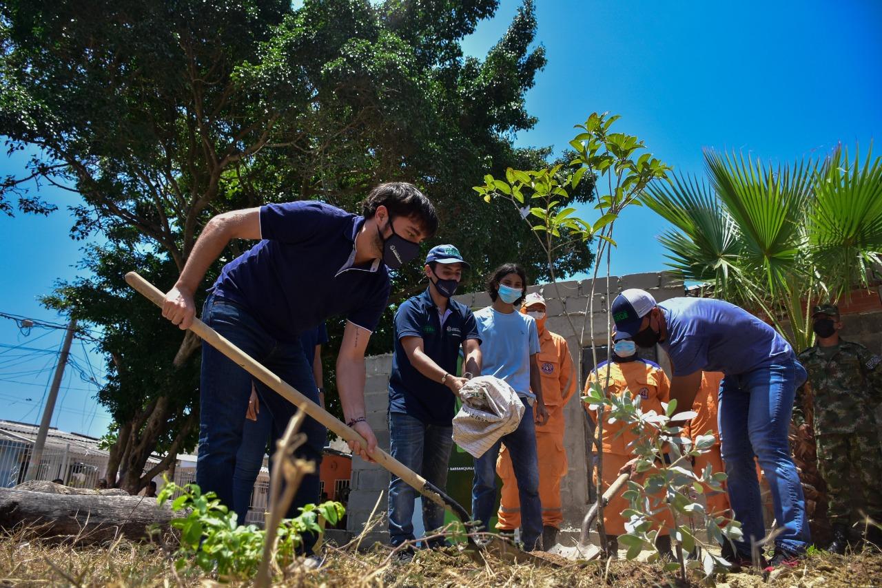 'BAQCultiva Vida' lleva árboles frutales y huertas a las casas de los barranquilleros – @alcaldiabquilla