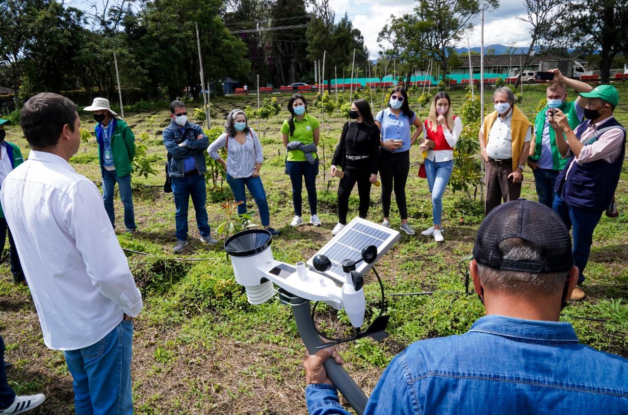 El proyecto Agro Antioquia Exporta 4.0 instaura como cultura productiva las buenas prácticas agrícolas (BPA)