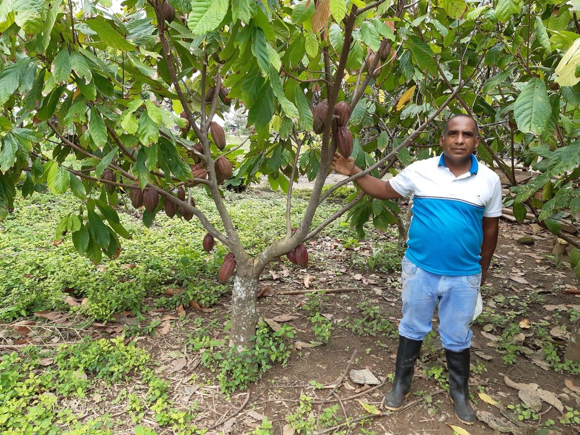 Cacao de Córdoba fue seleccionado como uno de los 50 mejores del mundo en el International Cocoa Awards