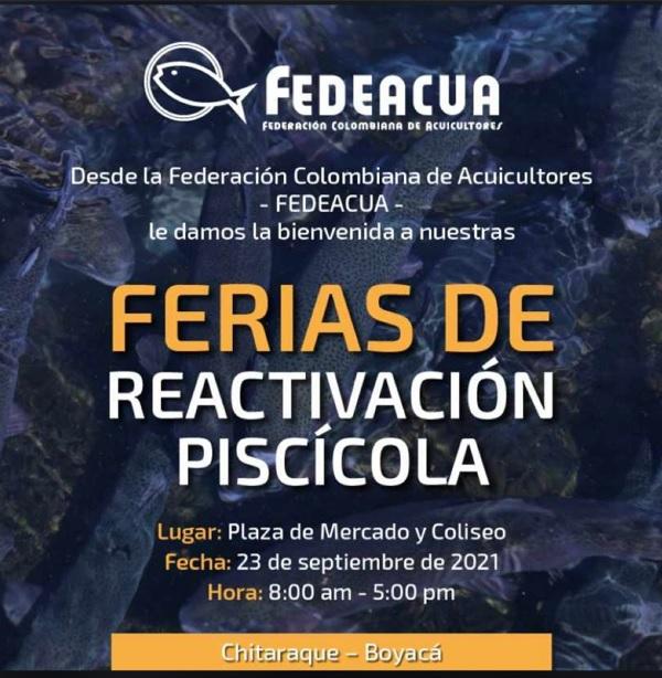Este jueves, Fedeacua realizará feria de reactivación económica del sector piscícola en Chitaraque